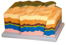 FAULT AND FRACTURES MODELS